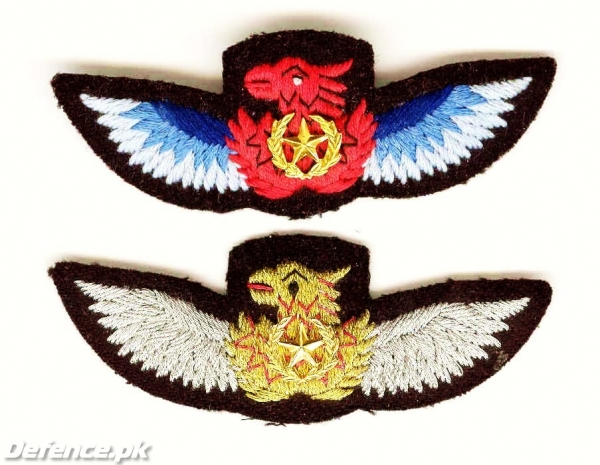 Pakistan Army Aviation Patches