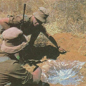 South Africa at war